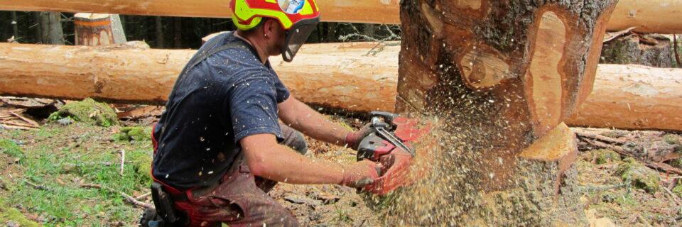 Im Einsatz für die Beschäftigten in der Land- und Forstwirtschaft